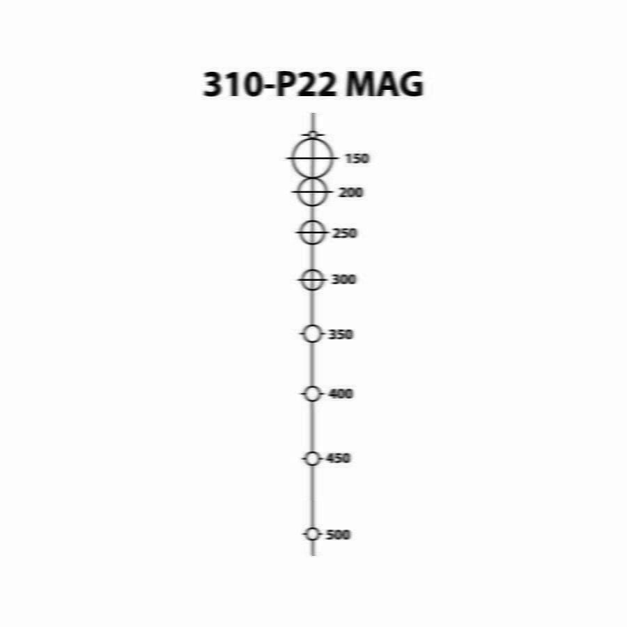P22 MAG